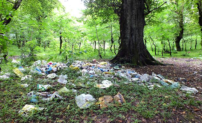 زباله در جنگل سیزده بدر