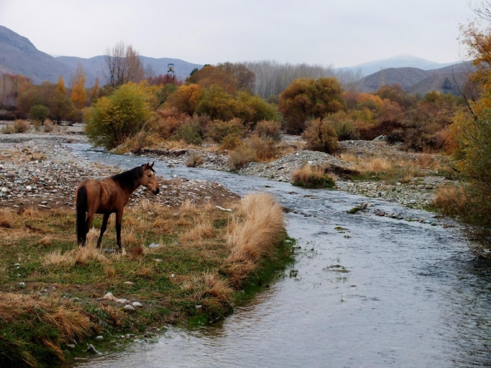 مجموعه مناطق حفاظت شده جاجرود