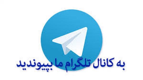 """آموزش """"خودکشی"""" و ارسال سیانور به نقاط مختلف کشور در تلگرام"""