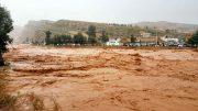 تعدادی از جانباختگان شیراز به خاک سپرده شدند