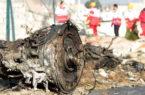 ارتباط رادیویی هواپیمای اوکراینی با برج از دست رفته بود