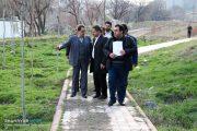 توجه ویژه شهرداری تبریز به توسعه پارکهای محلهای/ ۲۰ پارک جدید احداث میشود
