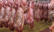 احتکار بیش از ۱۶ هزار کیلو گوشت قرمز در تهران