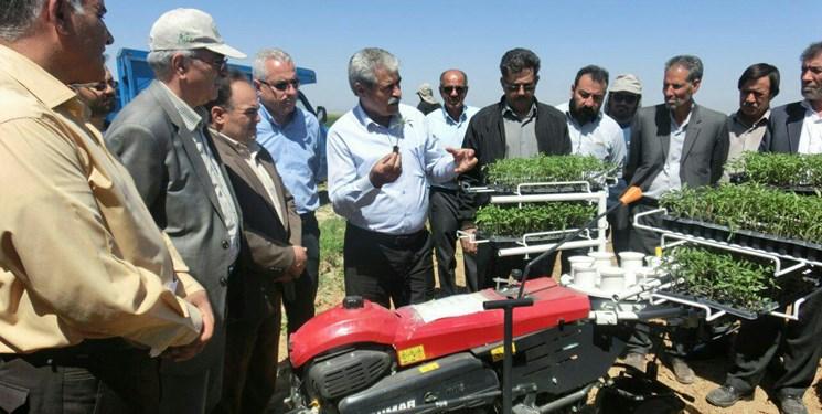 کشت نشایی محصولات زراعی در سطح ۲۸۰ هکتار از اراضی آذربایجانغربی