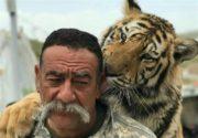 توضیحات مصدوم حادثه حمله شیر در قزوین