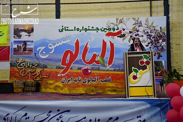 دومین جشنواره استانی آلبالو - تسوج